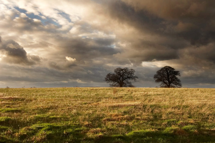 Landscape by Chris Marwood Photography