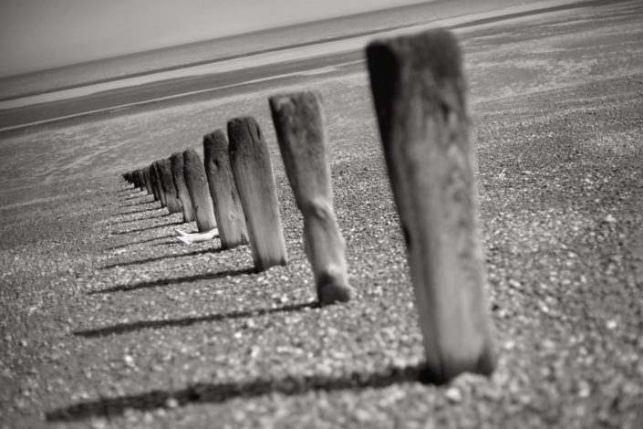 Legs at Winchelsea Beach by Chris Marwood Photography