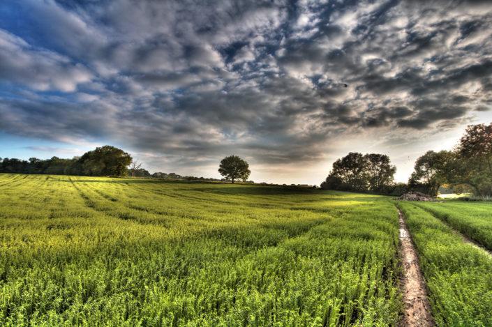 Kent Landscape Photography 10