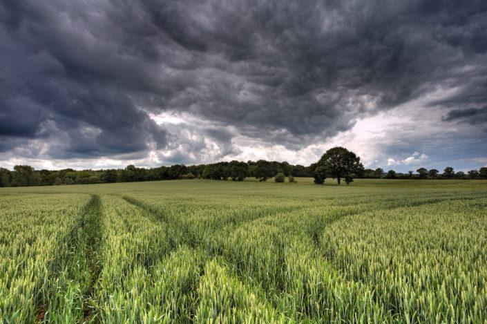 Kent Landscape Photography 3