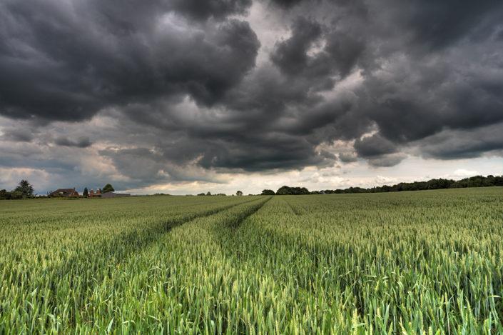 Kent Landscape Photography 5