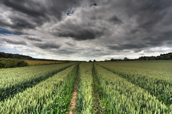 Kent Landscape Photography 6