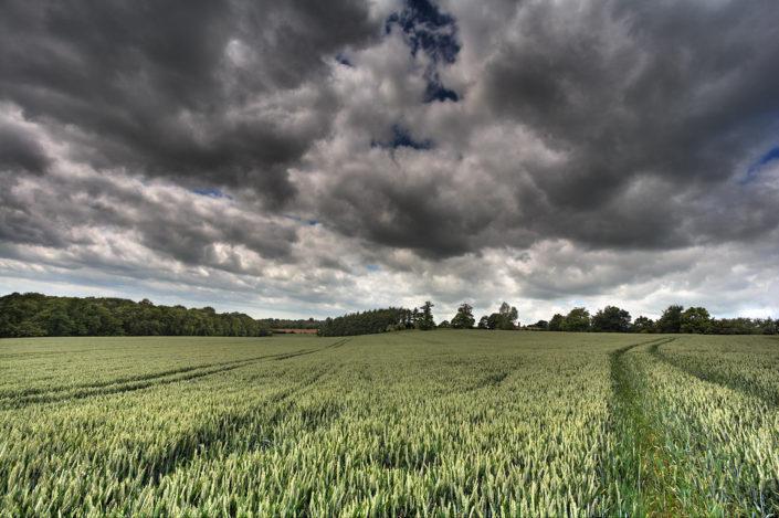 Kent Landscape Photography 7