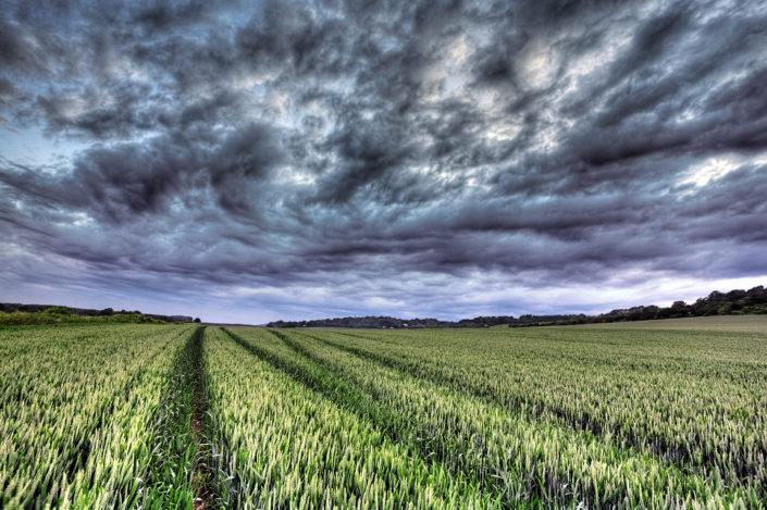 Kent Landscape Photography 9