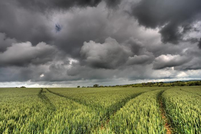 Kent Landscape Photography 1